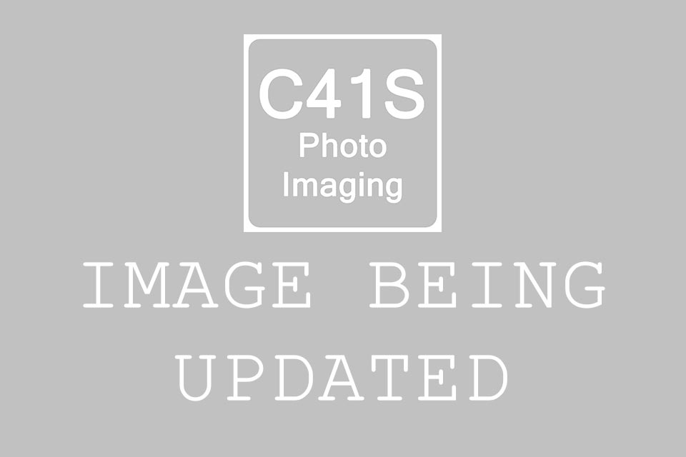 C41s Photo Imaging - Image Being Updated