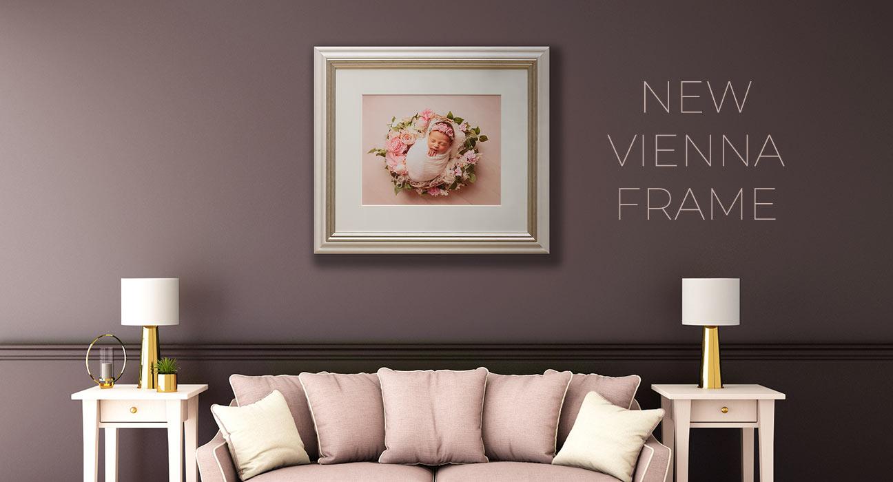 New Vienna Frame